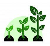 Profit Growth Concept