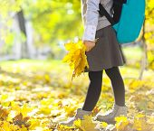 Little Schooler Girl In The Autumn Park