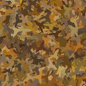 stock photo of ducks  - Ducks in a Camouflage Pattern - JPG