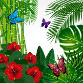 Tropical floral design background with butterflies.