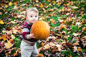 Wide Eyed Toddler Outside Holding A Big Pumpkin