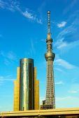 Sky Tower and Asahi Beer Hall buildings in Tokyo, Japan.