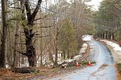 Winter Storm 2010 New Hampshire