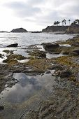 Laguna Tide Pools