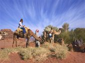 Camel Ride In Jordan