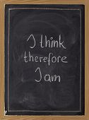 I Think, Therefore I Am - Philosophical Statement