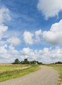 Road On Texel