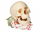 Human Skull, Playing Cards And Money