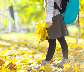 pic of little school girl  - Back to school - JPG