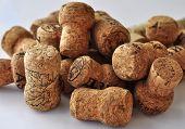 Gorka Wine Corks
