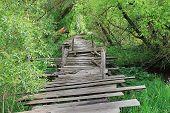 Dangerous if broken wooden bridge on foot -