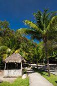Caribbean Street, Playacar, Playa Del Carmen