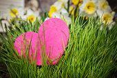 Heart Growing In Green Grass