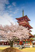 Nara, Japan at the Pagoda of Yakushi-ji Temple.