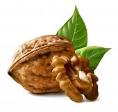 stock photo of walnut  - Walnuts with leaves and kernel walnut - JPG