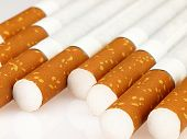 Several Cigarettes On A White Background.