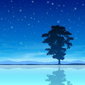 A Single Tree Standing Alone with Night Sky and Reflection in Water. Vector EPS 10.