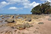 picture of underground water  - Landscape view of Hot Water beach in Mercury Bay on the east coast of the Coromandel Peninsula New Zealand - JPG