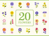 vector flower card vector illustration