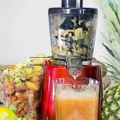 Extractor Juice Low Rpm In Working Produces Fresh Juice Without Oxidation