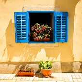 Retro Mediterranean Window with Flowers