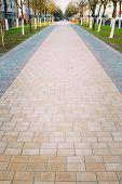 Walk Way Surface