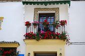 Spanish balcony, Ronda.