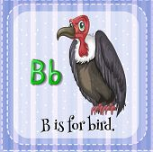 Illustration of a letter B is for bird