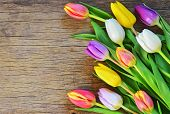 Bouquet Of Colorful Tulips Over Rustic Wooden