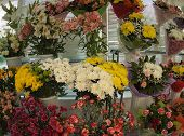 picture of flower shop  - Bouquets of flowers on display at a flower shop - JPG