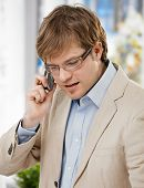 picture of goatee  - Young caucasian businessman talking on mobile phone - JPG