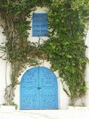 pic of combinations  - Blue door and white wall surrounded by green tree make a beautiful combination - JPG