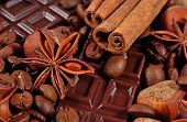 image of cinnamon sticks  - Coffee chocolate star anise cinnamon sticks and hazelnuts background  - JPG