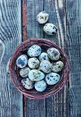 picture of quail egg  - quail eggs in the nest and on a table - JPG