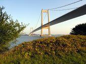 Bridge And Autumn
