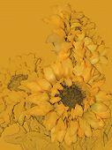 Sunflowers In Yellow