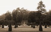 picture of courtier  - Gardens of the palace in Rogalin  - JPG