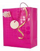 Girly Gift Carrier Bag