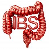 Ibs Medical Concept As Painful Digestionor Irritable Bowel Syndrome And Intestine Pain Or Intestinal poster