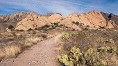 Organ Mountains Desert Peaks National Monument, New Mexico. A Hiking Path Leads To Dramatic Views Of poster