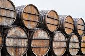 Old Wine Barrels In Vineyard, Close-up. Winery, Winemaking poster