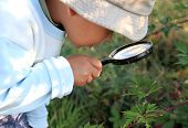 Little Boy With Magnifying Glass Ready To Explore Stock Photo poster