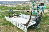 Greenland dog sled and husky sled dog puppy in Ilulissat Greenland. Two dog sleds parked in summer n poster