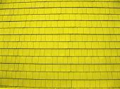 Shingles  Yellow