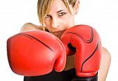 Постер, плакат: Портрет молодой красивой женщины боксер