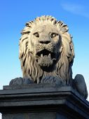 Lion of Chain Bridge in Budapest, the lions were carved in stone by the sculptor, Marschalko JÃ??Ã??