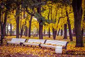 Autumn In The Park, Three Benches In The Park, Benches In The Park In The Fall, Autumn, Walk In The  poster