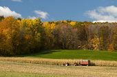 Farming In Autumn