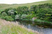 Mire Loch, St Abbs Head