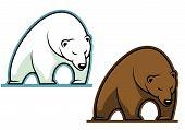 Gran oso kodiak